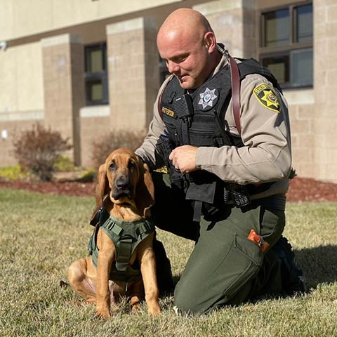 Copper and Deputy Donny Patterson are in California training for the bloodhound's role as a tracker. \f0\fs24 \cf0 photo provided